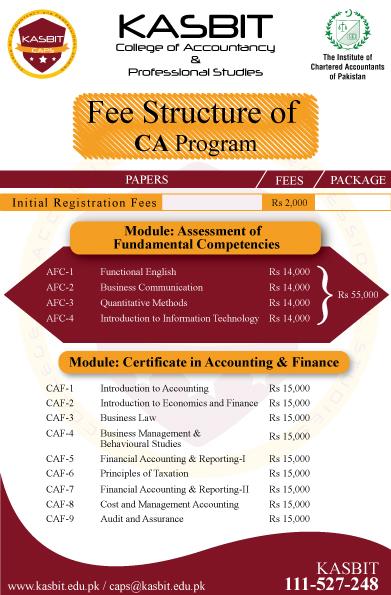 f087cdd3145 CA Fee Structure